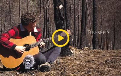 Music Video: Fireseed